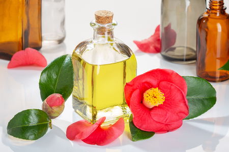 Camellia oil bottle for beauty, skin care, wellness and medicinal purposes