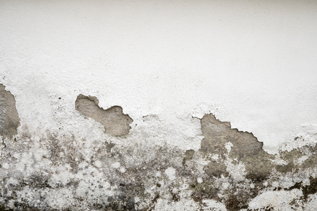 Concrete Painted Wall damaged by humidity