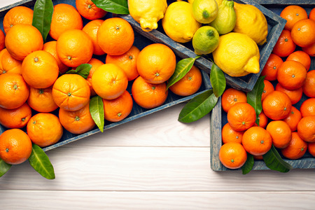 Fresh citrus fruits on wooden background with copy space for text. Orange fruits, lemons, tangerines, limes. Healty food, vitamin C