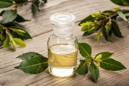 Aceite esencial de laurel de bahía sobre fondo de madera. Aceite de bahía en botella de vidrio. Laurus nobilis