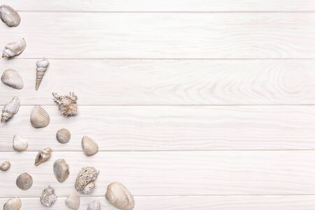 Summer background with white wooden table with many seashell. Top view copy space for text
