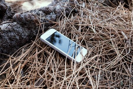 Smart phone lost in the forest. Forgotten device concept