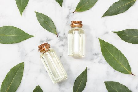 Bay laurel essential oil on marble table. Bay oil on glass bottle with dropper. Laurus nobilis Stockfoto