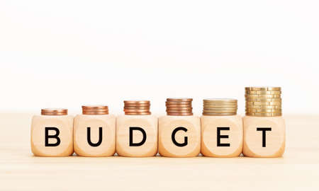 Budget word on wooden blocks and coins on table. White background. Copy space
