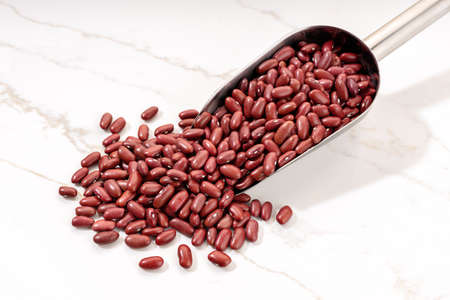 Uncooked Red beans on metallic scoop on white marble table. Phaseolus vulgaris