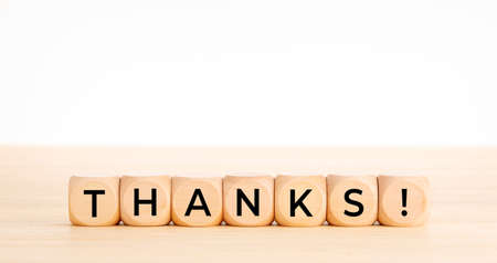 Thanks word on wooden blocks. Copy space. White background