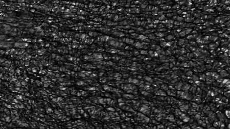 Abstract Black texture background. Digital image