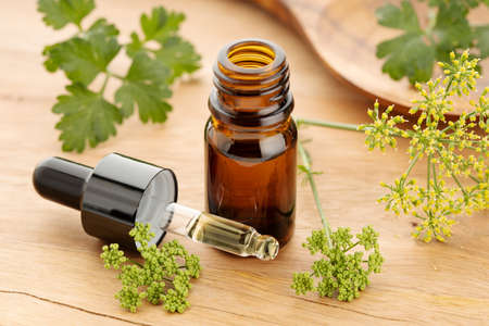 Parsley essential oil on bottle and fresh parsley flowers and leaves on wooden table