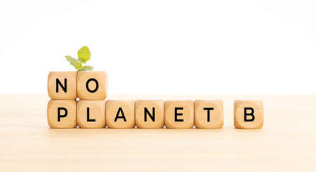 No Planet B phrase in wooden blocks on table. White background. Copy space