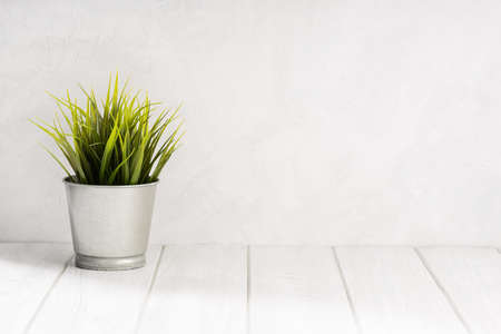 Empty white wooden table with green plant pot and white concrete wall texture background. Copy space, display montage for product