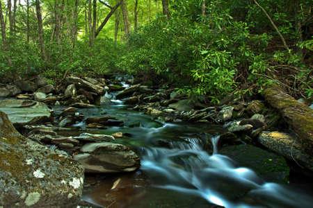 cascade mountains: A wild water stream in Smoky Mountains National Park USA
