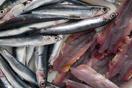 To eat healthy: anchovies of the Mediterranean sea