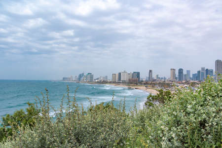 A body of water with a city in the background. A view of the Tel Aviv coastal strip. Urban landscape. Buildings near the Mediterranean. The sky covered with clouds. A clear blue sea with waves and white foam. Cloudy day with fog. Green bushes. High quality photo