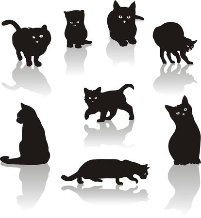 silueta de gato: Gatos icono de conjunto Vectores