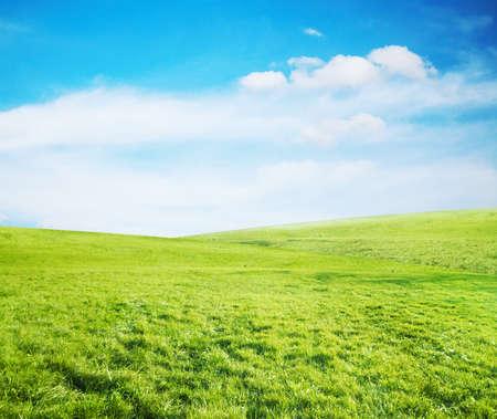 fresh air: beautiful sky and summer fields