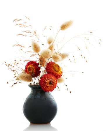 ikebana on white background