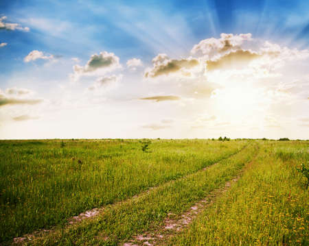sunset in the fields, rural landscape with country road photo