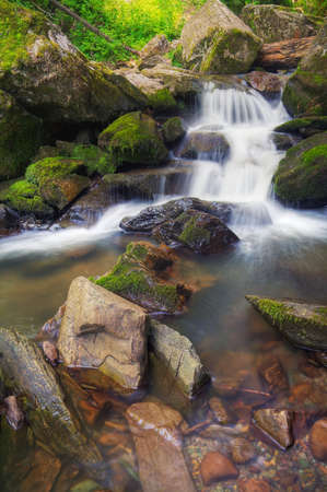 forest stream in thr mountains photo