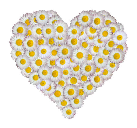 heart made of flowers, clipping path photo