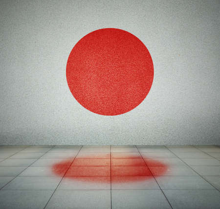 Japan flag on the wall in empty room, studio background photo