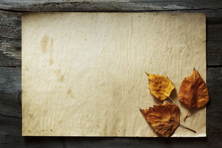 autumn leaves and old paper on wooden background photo