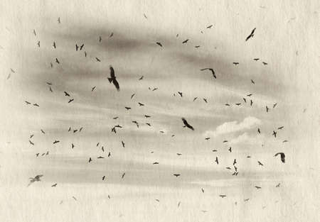 bird life: birds flying in the blue sky, retro illustration