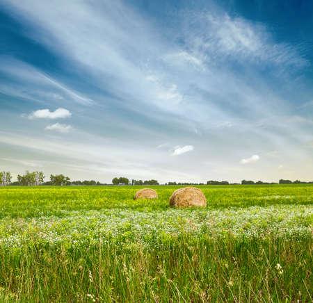 haymow: beautiful sky and green fields Stock Photo