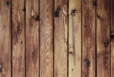 old wood: Old wood texture