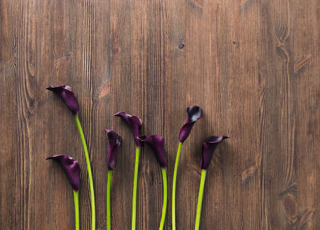 calla lily on rustic wooden table Stock Photo