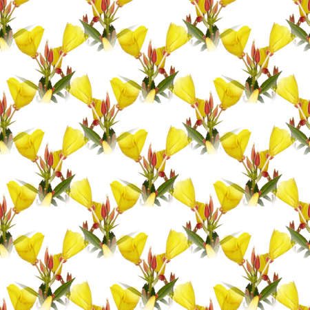 seamless flowers pattern, floral background