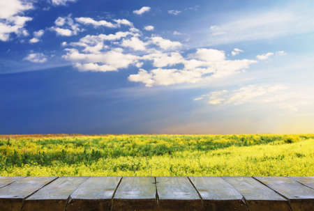 wooden table with rapeseed field landscape, background