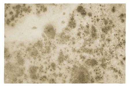 old paper texture, grungy background Zdjęcie Seryjne