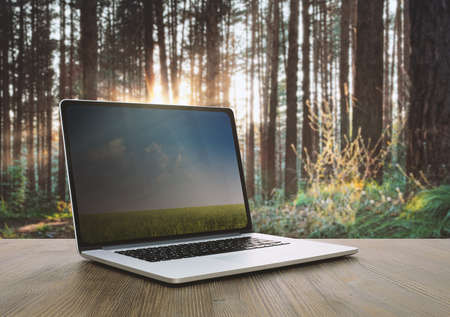 pc on wooden table, sunset forest background Фото со стока