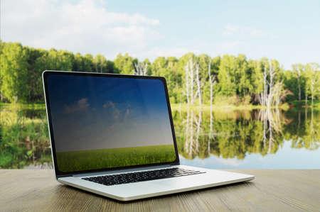 forest lake Фото со стока