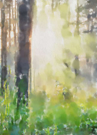 watercolor colorful illustration, sunet forest