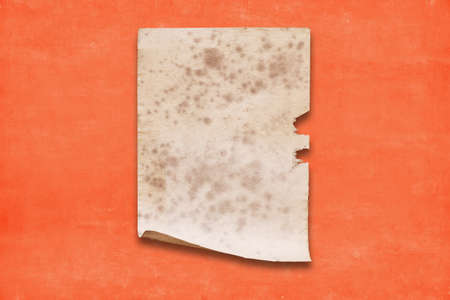 old paper on red wall, vintage background