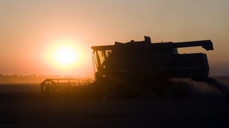 combine: Combine removes wheat warm summer evening Stock Photo