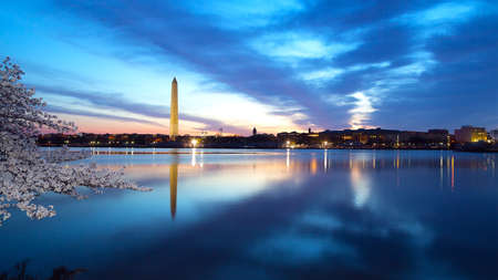 washington landscape: Washington Monument at night with the city skyline and cherry blossom. Colorful reflections of Washington landmarks in the Tidal Basin.