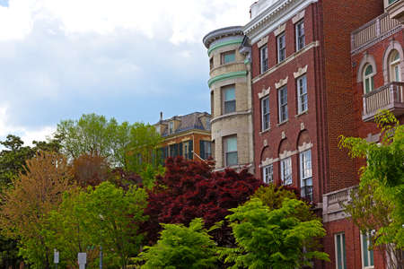 Shades of green color and townhouses in Washington DC during spring. Colors of spring in US capital city.