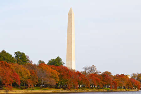 usa: Washington Monument in autumn. The Monument is surrounded by trees in the colorful foliage during the Fall in DC, USA.