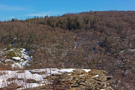 west virginia trees: Appalachian Mountains near Blackwater National park in West Virginia, USA. Winter in the mountains of rural West Virginia.