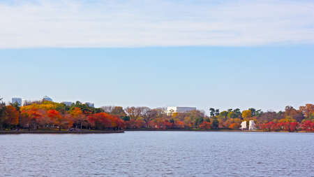 Washington DC panorama around Tidal Basin in autumn with a view on Memorials of Lincoln and Martin Luther King Jr. Beautiful urban landscape near the water in autumn.