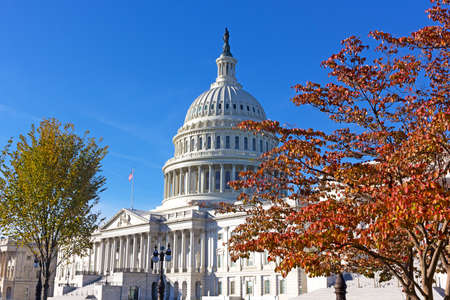 United States Capitol in autumn, Washington DC, USA. Architectural glory of neoclassical monument framed into natural beauty of deciduous trees in fall colors.