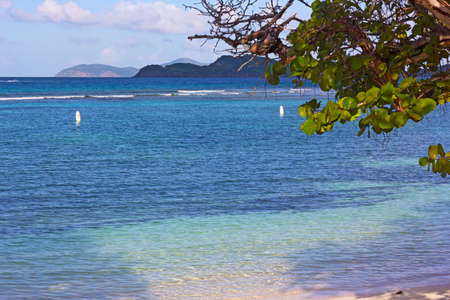 Sandy beach with shallow quiet waters and terrific view on St John and smaller Virgin Islands. Sea grape plant grows on Lindquist Beach, St. Thomas, USVI.