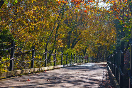 A pedestrian and bike trail along Potomac River in Arlington, VA, USA. Trail among deciduous trees on a sunny morning in autumn.