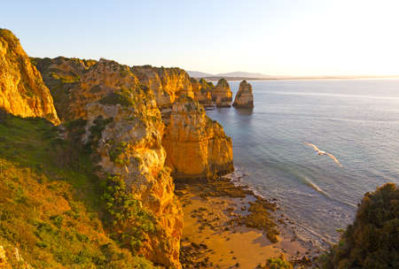 A secluded sandy beach and seagull soaring through the air at sunrise. Panorama with scenic cliffs and quiet waters of sea harbor in Lagos, Portugal. Фото со стока