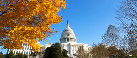 Capitol Building grounds on sunny day. Autumn colors of maple tree contrast with blue skies. Stok Fotoğraf