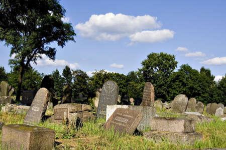 Old Jewish cemetery (Bialystok, Poland) Stock Photo - 2044004