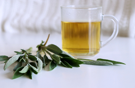 Sage tea and sage leaves. Infusion made from sage leaves. Medicinal herb Salvia officinalis. The concept of healthy nutrition. Stock Photo