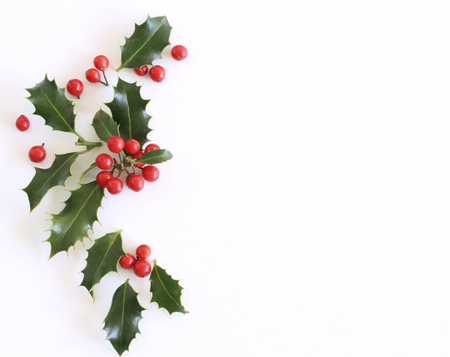 Christmas holly Ilex aquifolium isolated on white table background. Evergreen leaves with red berries. Empty space for holiday text. Decorative floral frame, web bannerlat lay, top view. Stock fotó - 114562961